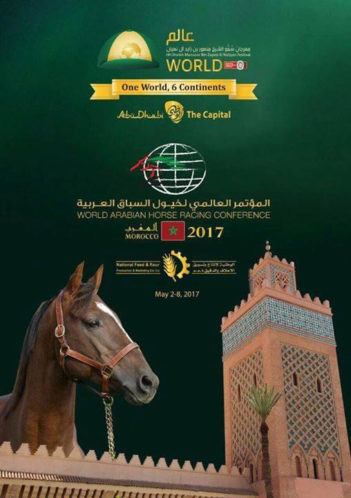 lo_marokkoi_verseny2017_sportmenu